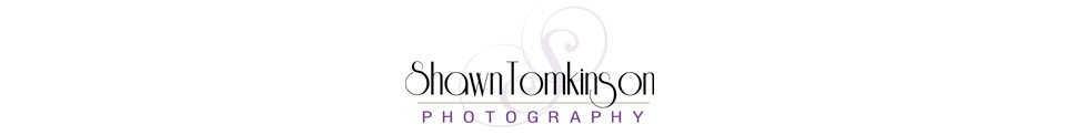 Wedding Photographer NH logo